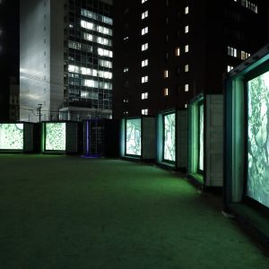 Films shown on shipping containers.